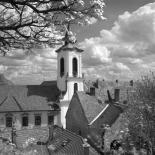 fot. Janusz Różycki